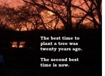 Blog 1 Quote